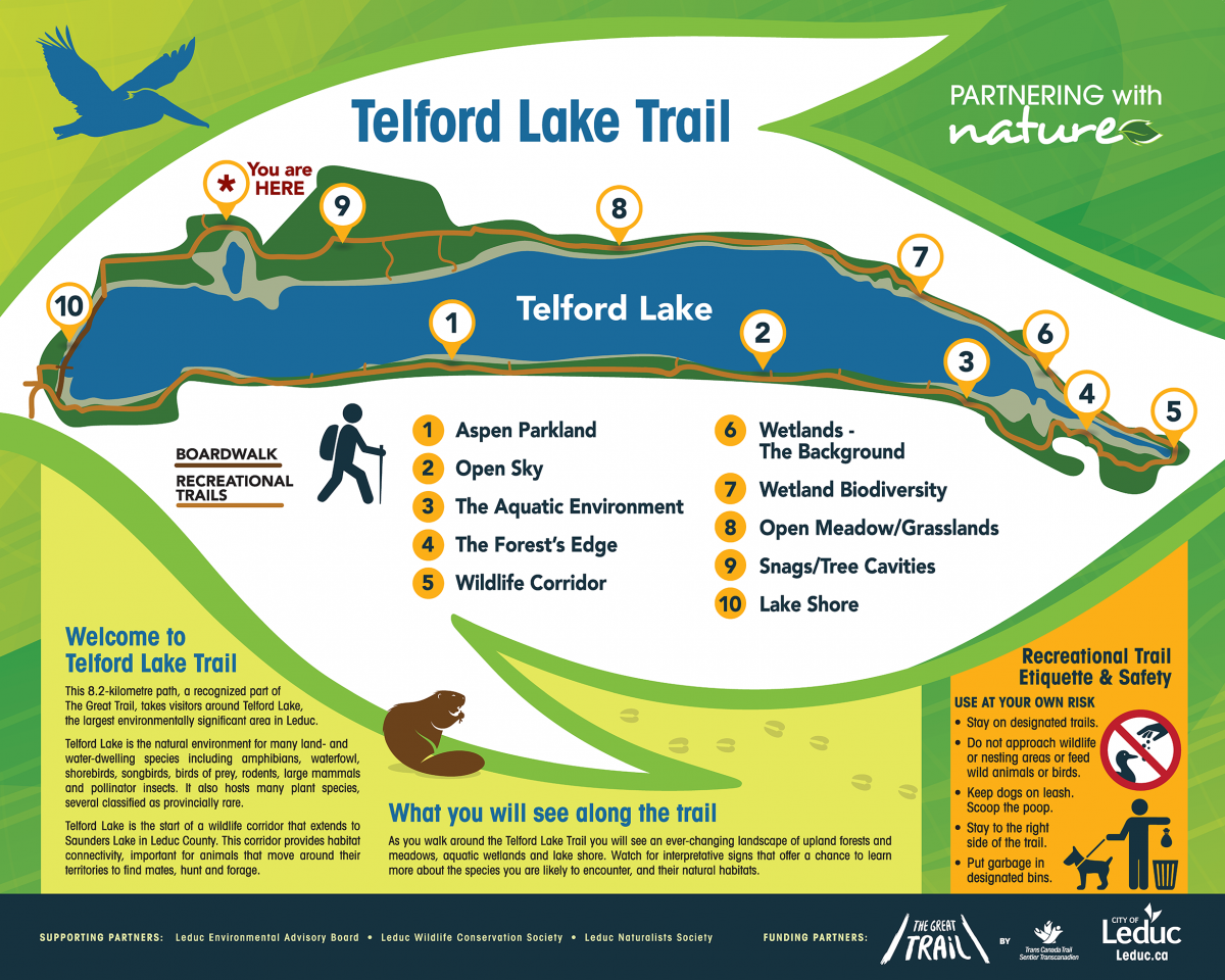 TELFORD_MAP_60x48v10_reverse_NORTH_OL.png
