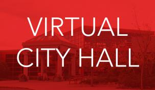 Virtual City Hall image