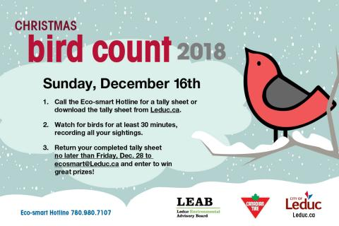Christmas bird county 2018 graphic with instructions for participation