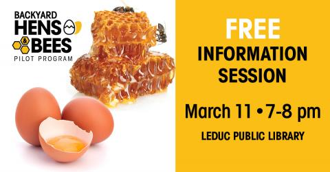 Bees & Hens Free information session March 11