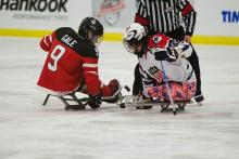 Photo of sledge hockey players at the Leduc Recreation Centre