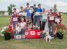2016 - Dog Agility Canadian Open 26