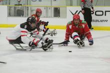 Sledge Hockey photo