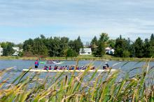 Dragon Boat racing on Telford Lake