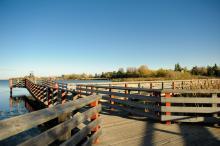 Boardwalk over top of Telford Lake